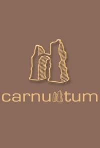 Weingut Payr - Spitzenberg reserve Carnuntum blaufränkisch 2011 1,5 l