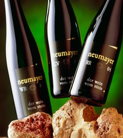 Weingut Neumayer - Sauvignon Blanc Giess 2009